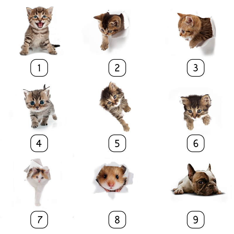 Cute 3D Animals Cat Toilet Stickers Refrigerator Posters Wall Sticker фото